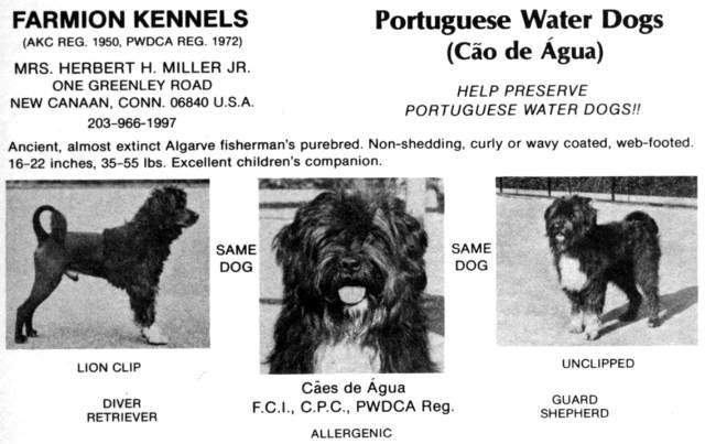 Farmion-Kennels